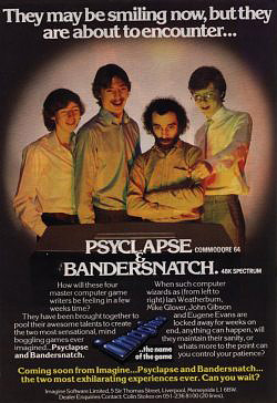 Bandersnatch video game