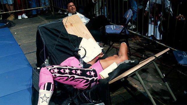Bret Hart Survivor Series 1995