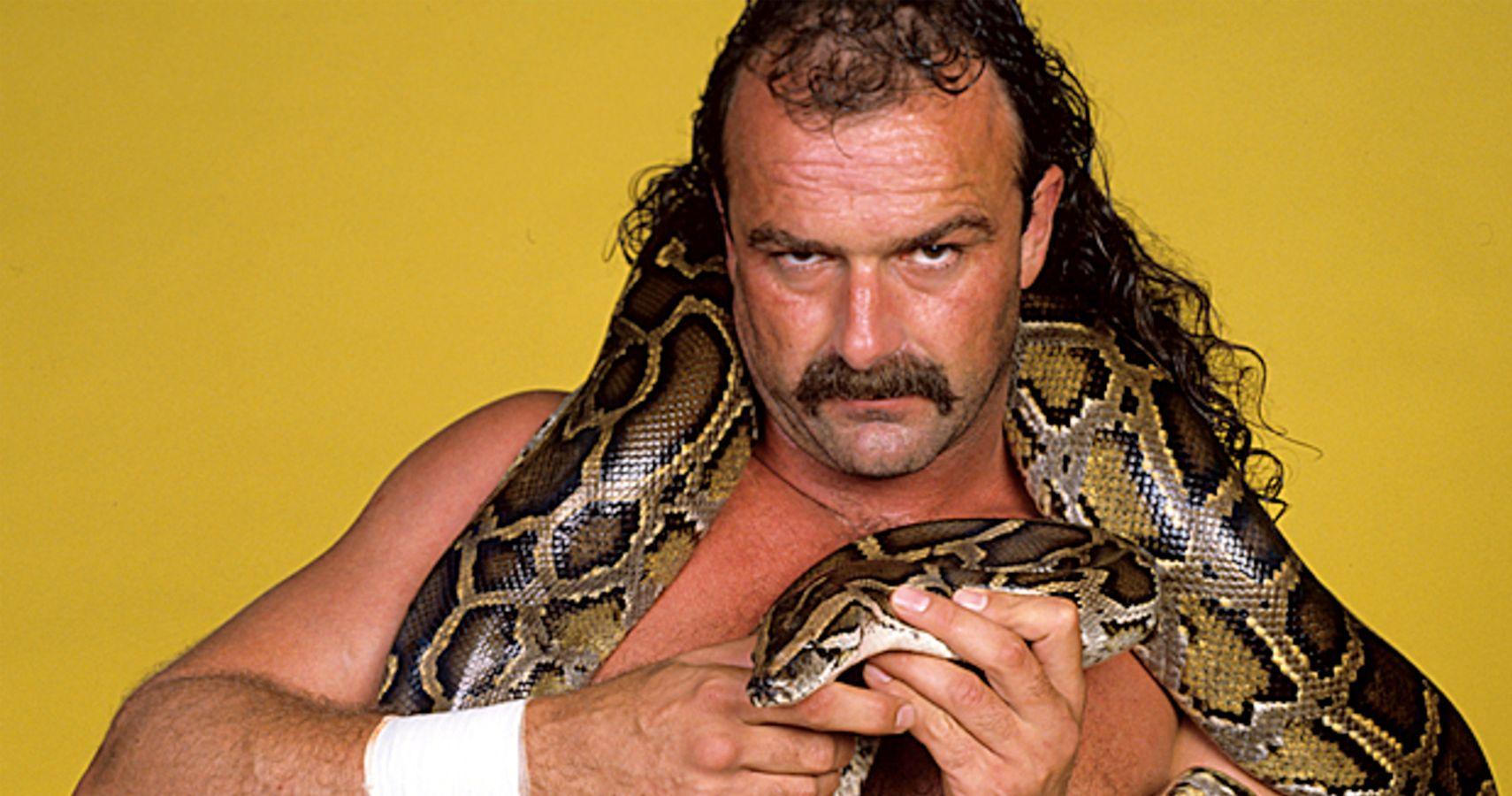 Jake the Snake Roberts retrospective